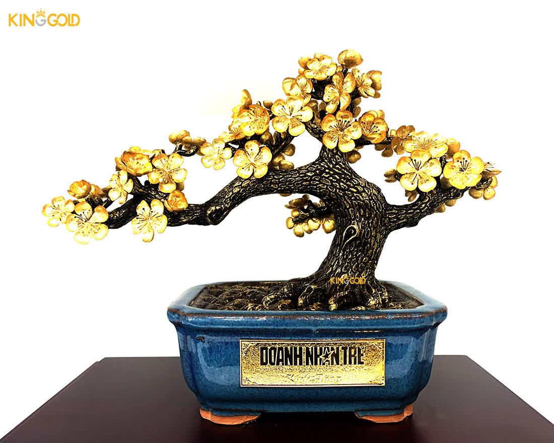 1000 cây mai vàng quà tết Doanh nhân trẻ Việt nam